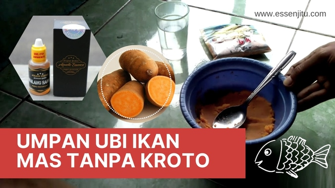 Resep Umpan Ubi Ikan Mas Tanpa Kroto Paling Mantap 2019 Jaya Essen Di Pondok Gede Bekasi Kota 8 May 2019 Berita Warga Atmago Warga Bantu Warga