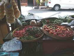 61242 small warung sayur 2