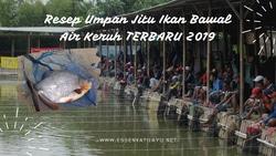 61250 small resep umpan bawall