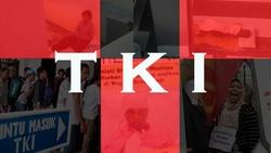 61313 small tki