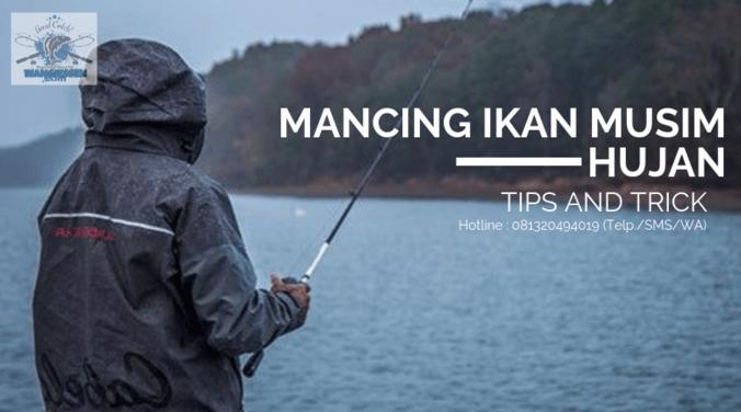 62004 medium tips and trik mancing ikan di saat musim hujan paling joss!