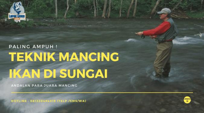 62062 medium teknik mancing ikan di sungai paling ampuh anti zonk!