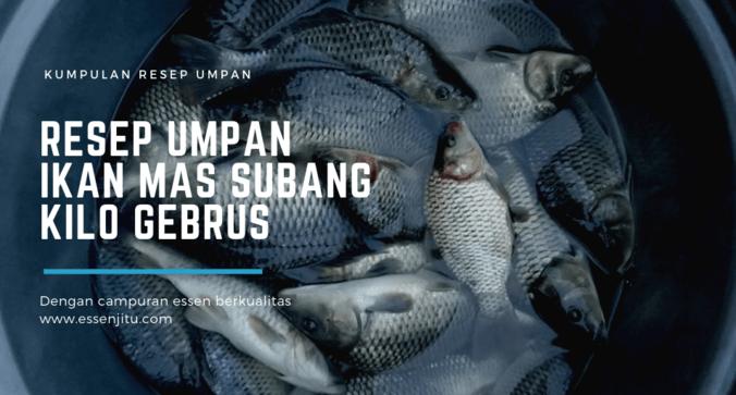 Resep Umpan Ikan Mas Subang Kilo Gebrus Terbukti Ampuh Jaya Essen Di Pondok Gede Bekasi Kota 12 Jun 2019 Berita Warga Atmago Warga Bantu Warga