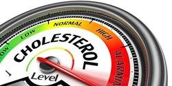 63588 small tinggi rendahnya kolesterol tergantung pada gaya hidup