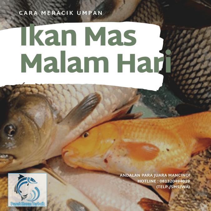 Cara Meracik Umpan Ikan Mas Malam Hari Anti Boncos Essen Jitu Tasik Di Bandung Kabupaten 14 Jun 2019 Berita Warga Atmago Warga Bantu Warga