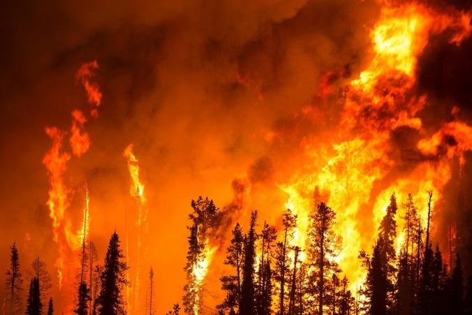 63754 medium awal musim kemarau  kebakaran di bantul tinggi. satu hari bisa sampai dua kejadian