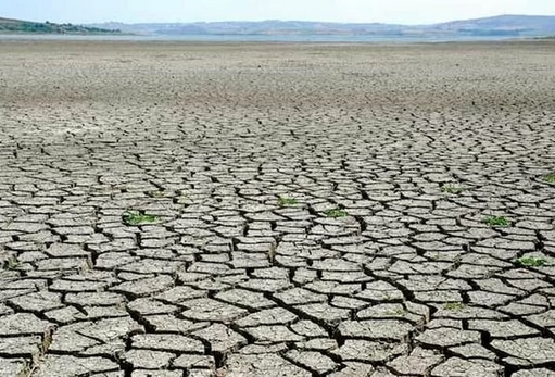 63968 medium curah hujan rendah di beberapa wilayah  bnpb imbau antisipasi karhutla