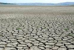 63968 small curah hujan rendah di beberapa wilayah  bnpb imbau antisipasi karhutla