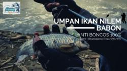 63988 small resep jitu umpan ikan nilem babon anti boncos!
