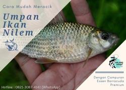 64298 small umpan ikan nilem