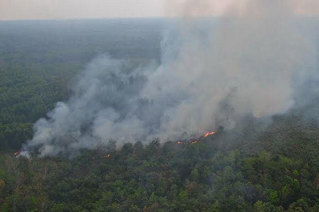 64332 medium bmkg imbau warga jateng waspada kebakaran hutan