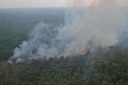 64332 small bmkg imbau warga jateng waspada kebakaran hutan
