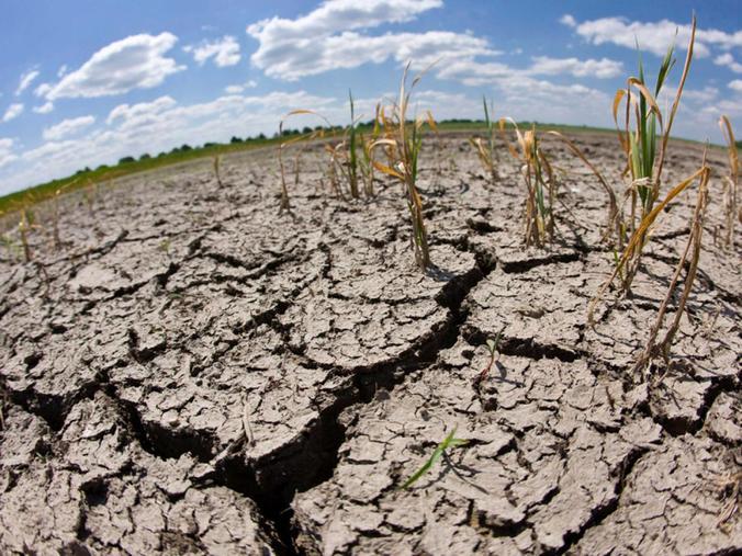 64408 medium musim kemarau lebih cepat  400 hektar sawah di gunungkidul kekeringan