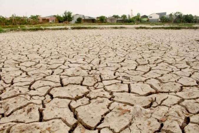 64609 medium ntb siap distribusi air bersih di wilayah kekeringan %282%29