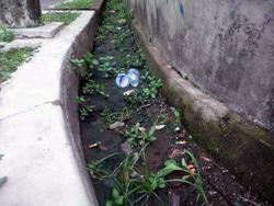 718 small warga kompleks hankam keluhkan saluran tersumbat