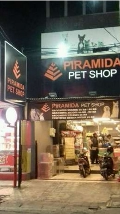 Store manager   kasir  groomer pet shop