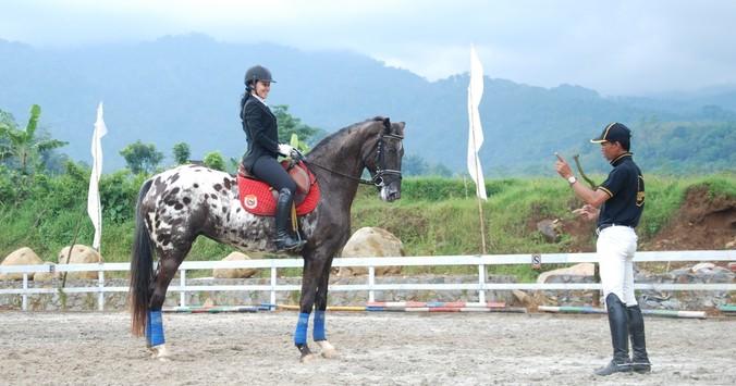 16 16 38 belajar naik kuda