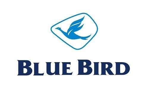 Pengemudi taksi bluebird