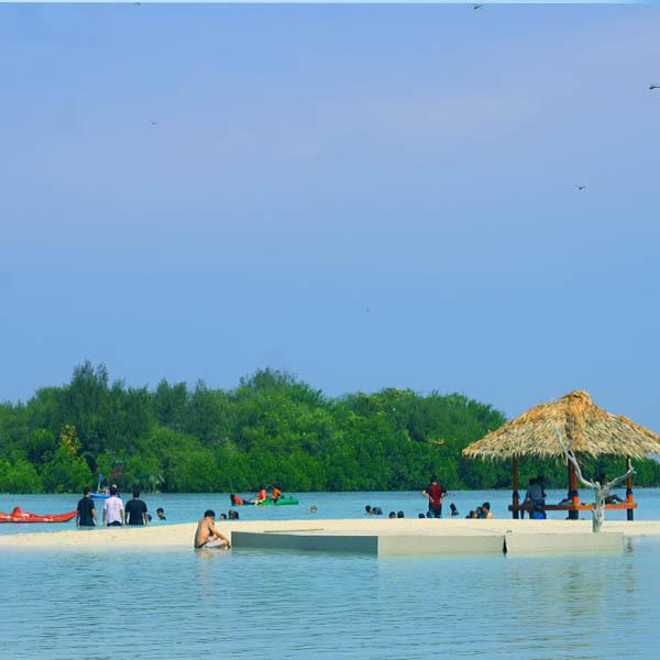 Pulau parii 1